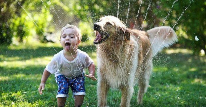 Ребенок и собака в жаркий день