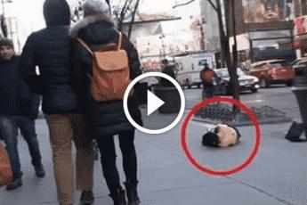 Наплевательское сострадание на улице в Нью-Йорке