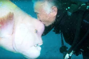 Дружба человека и рыбы