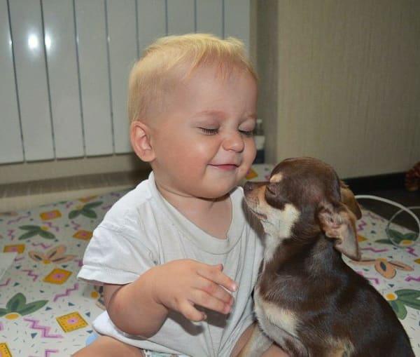 Милые детки