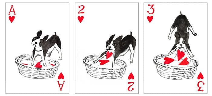 Собачьи карты