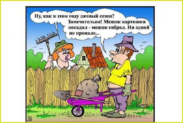 Комиксы про дачу
