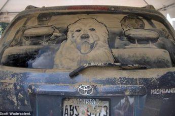 Рисунки на грязных автомобилях Скотта Уэйда