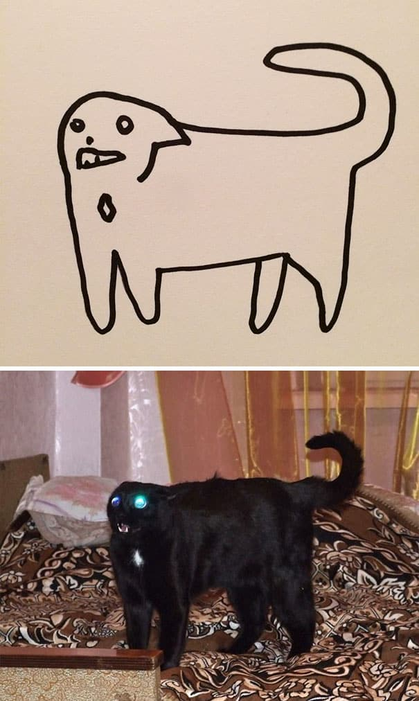 drawn_cats