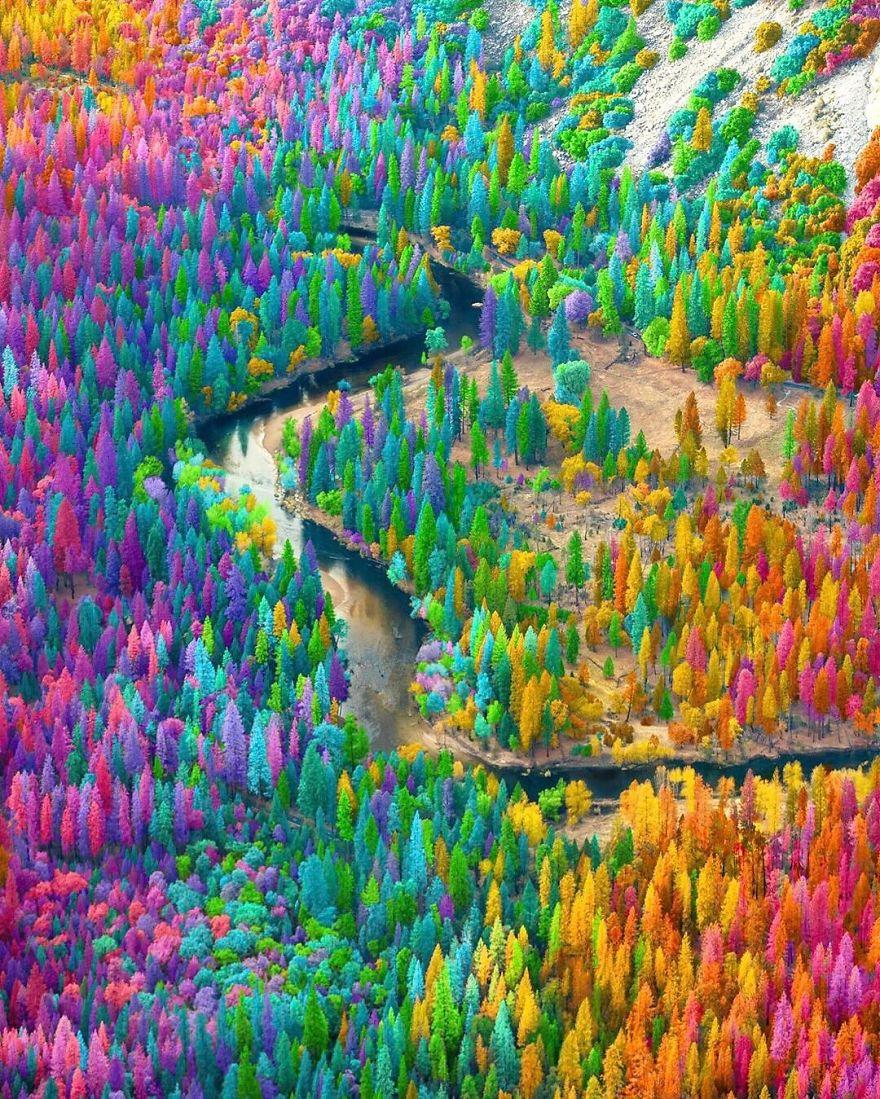 wood_rainbow