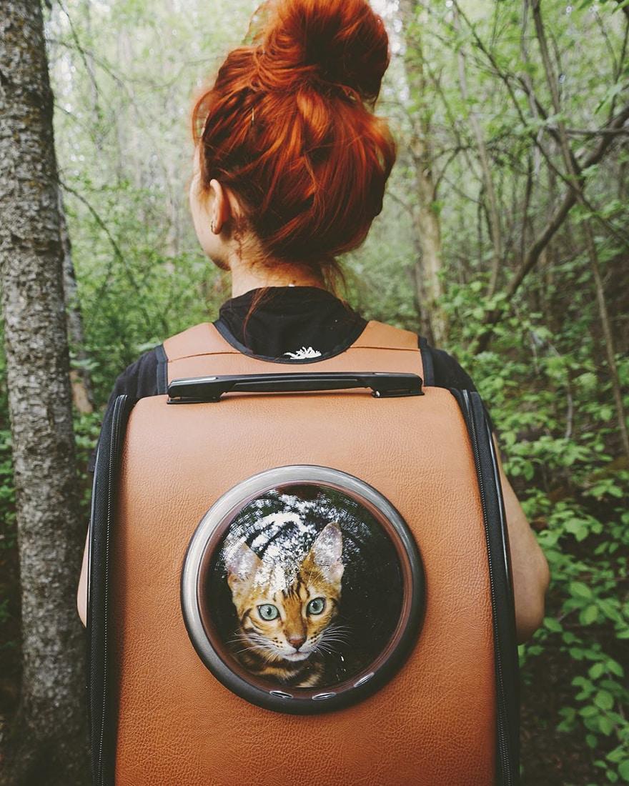 adventures_wood