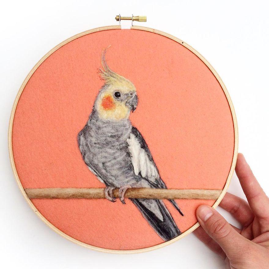 parrot_wool